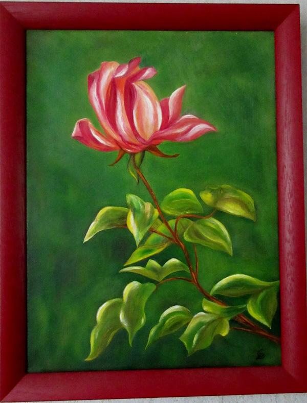 Eclat de rose